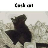 cash_cat_top_sell