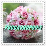 puccashop99