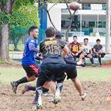 balot16