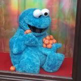 cookiemonster2411