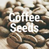 coffeeseeds