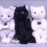 pudding_cat_shop