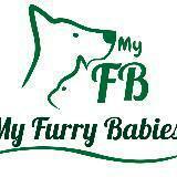 myfurrybabies