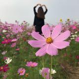 yuwen0116