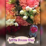 littledreamstar