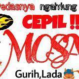mosa23