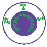 purpletagsale