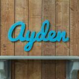 ayden_shop