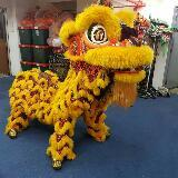 luke_the_liondancer