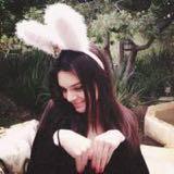 greedy_little_rabbit