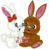 rabbitbabykids