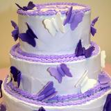 purpleheart8.