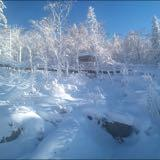 winterdeals