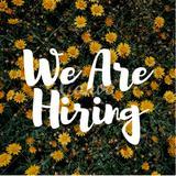 jobs_sg