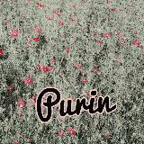 purin3210