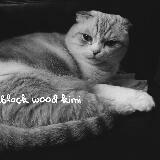 blackwoodmiki