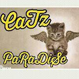 catz_paradise