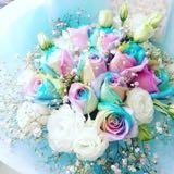 floristic16