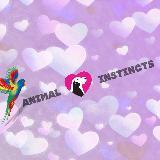 animal_instincts