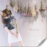sozzle