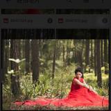 chuang_alma