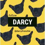 darcyfrenchie