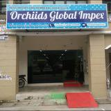 orchiidsglobalkl