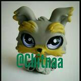 chitnaa