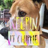 keepinit_chippie