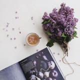 _winterberry_