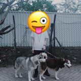 junfung1357533
