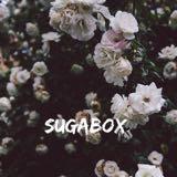 sugabox