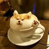 cccccoffee