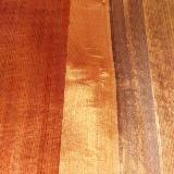 woodgrainrevival