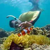 reefs.snorkel