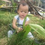 azie_aje