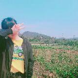 _joyce_li