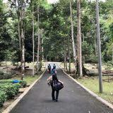 butterflygreen93