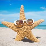 starfish_shop