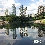 zhung_yu