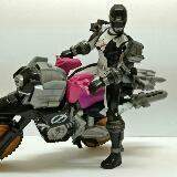 toys_tortoise