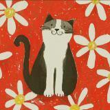 kiddykat_cat