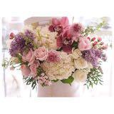 flowerssshoppp