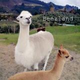 beezland