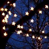 starryglass