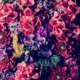 roses91