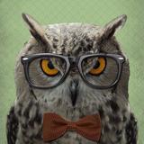 owl_glasses