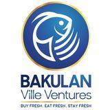 bakulanvilleventures
