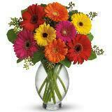 bloomingflowerz
