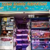 tiong_bahru_aquarium_centre